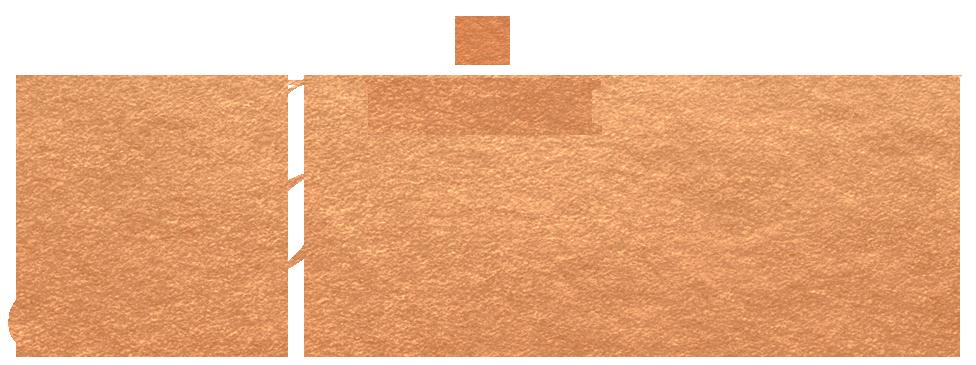 slp-blog-thejournal